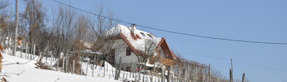 Vincenc Petruna,  Slovenija
